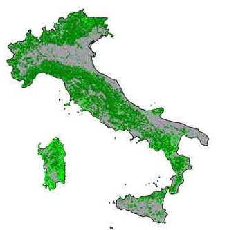 Le foreste in italia